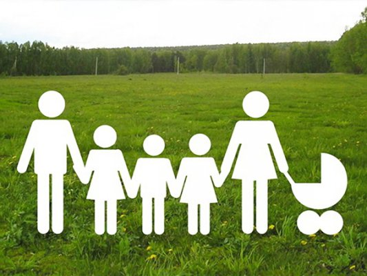 Многодетная семья на собственном земельном участке (рисунок)